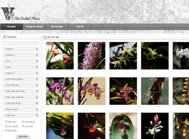 Thiết kế web giới thiệu công ty Vuonlan.vn